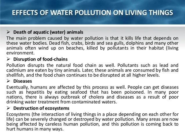 water pollution essay introduction