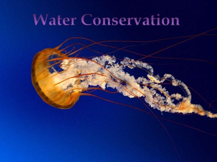 Water conservation evm