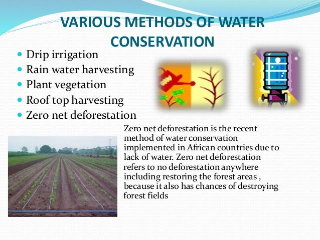 Water conservation water a precious resource - Ways saving water watering garden ...