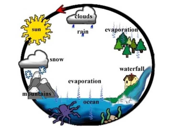 Water Rain Cycle Fo Source Abuse Report