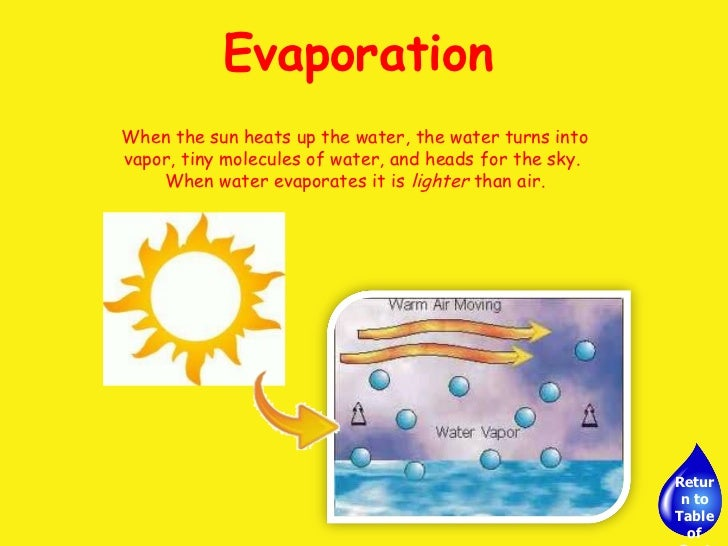 Evaporation - Elementary Science - YouTube