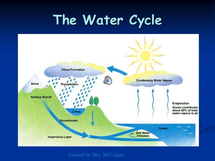 Worksheets Water Cycle Diagram For 5th Grade the water cycle worksheet abitlikethis 5th grade cycle