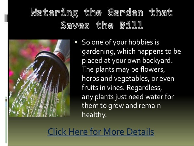 Watering the garden that saves the bill
