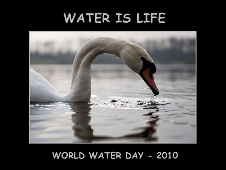 WATER IS LIFE WORLD WATER DAY - 2010