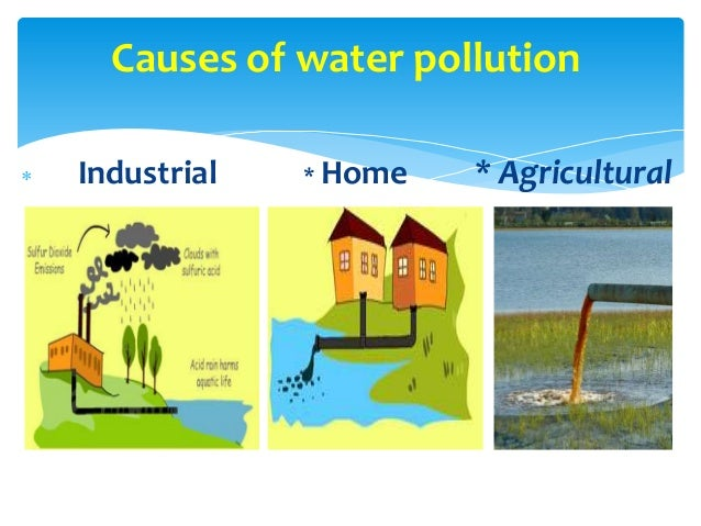 what is the cause of water pollution Pollution causes adverse change water pollution is often caused by the discharge of inadequately treated wastewater into natural bodies of water.