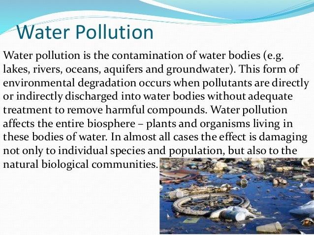 case study of river pollution essay Poverty and pollution case study join use chemicals that pollute air and water and poison the all poverty and pollution case study essays and term papers.