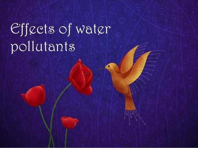 Effects of water pollutants
