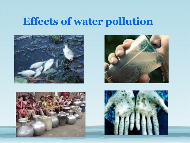 Water Effects in After Effects Effects of Water Pollution
