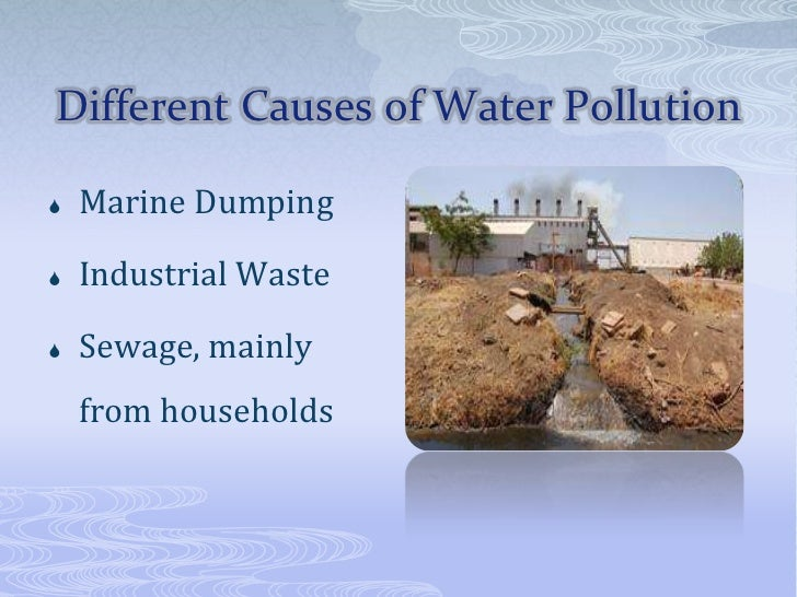 water pollution hypothesis