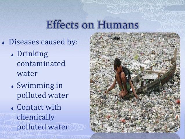 causes of contaminated land essay