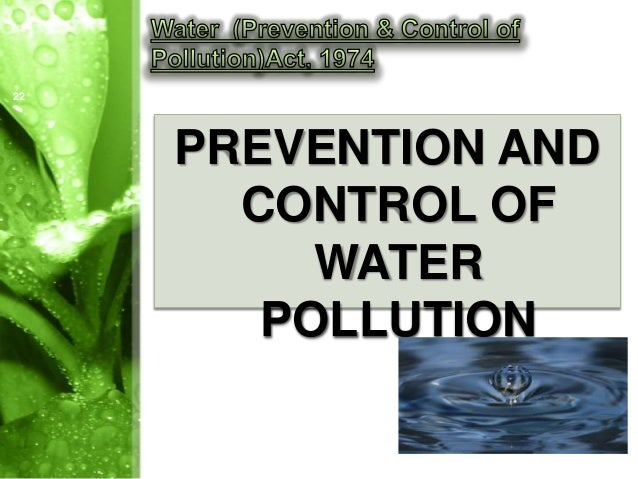 control water pollution essay Water pollution also affects ecosystems in a negative way, destroying them and thus affecting the ecological situation on earth these two factors have an indirect, but strong effect on humanity as for the direct effects, polluted water causes people to suffer from cholera, diphtheria, skin diseases, reproductive problems, poisoning, and so on.