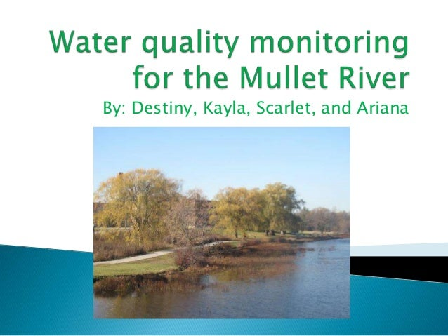 Water quality monitoring for the mullet river (1)