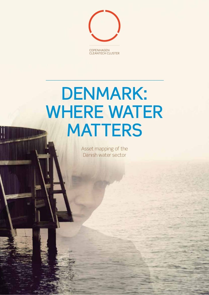 DENMARK:WHERE WATER MATTERS   Asset mapping of the    Danish water sector