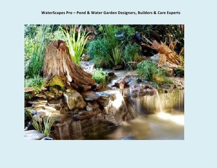 WaterScapes Pro – Pond & Water Garden Designers, Builders & Care Experts