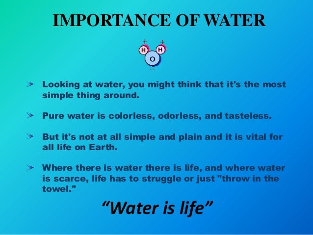 essay importance of water