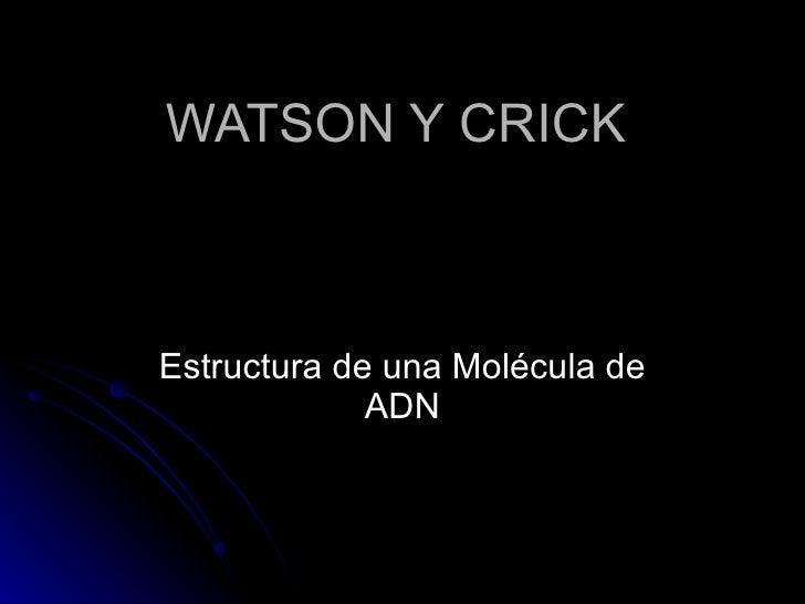 WATSON Y CRICK Estructura de una Molécula de ADN
