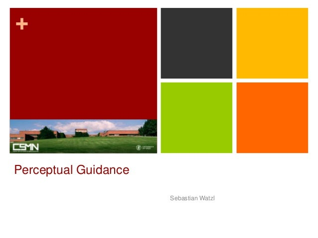 + Perceptual Guidance Sebastian Watzl