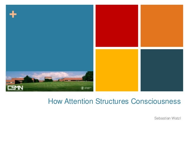 """Watzl """"How Attention Structures Consciousness"""" (April 2013"""