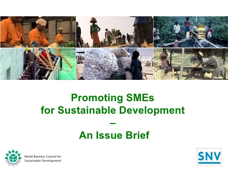 Promoting SMEs  for Sustainable Development  –  An Issue Brief