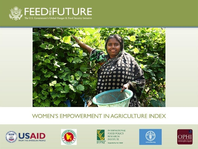 Construction of the Women'sEmpowerment in Agriculture Indexand pilot results