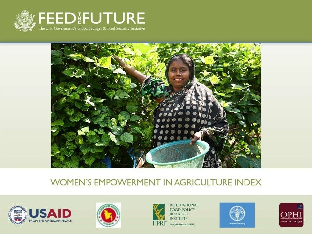 The Women's Empowerment in Agriculture Index (Spanish)