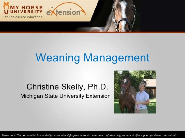 Weaning Management Christine Skelly, Ph.D.  Michigan State University Extension Please note: This presentation is intended...