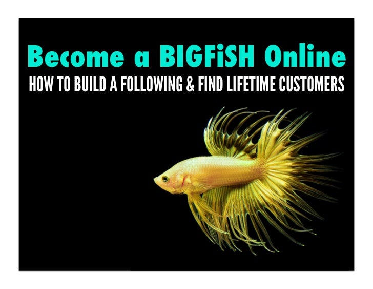Become a BIGFiSH OnlineHOW TO BUILD A FOLLOWING & FIND LIFETIME CUSTOMERS