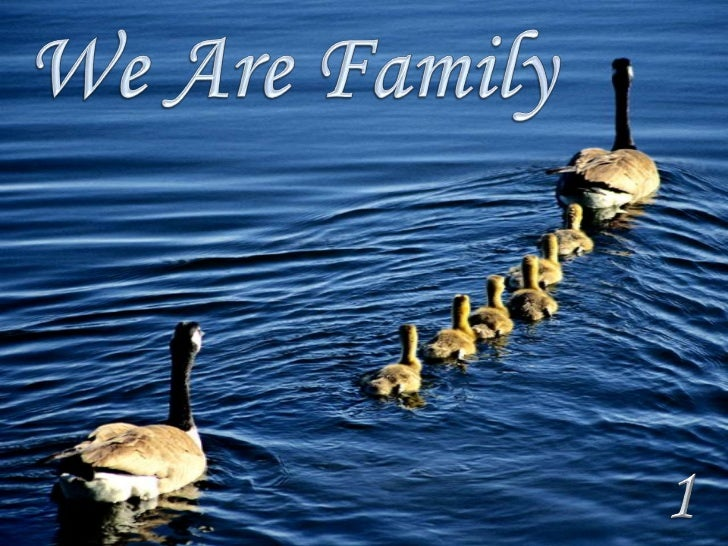WE  ARE  FAMILY  1