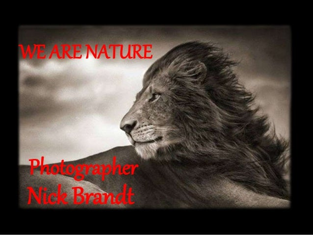 Photographer Nick Brandt WE ARE NATURE