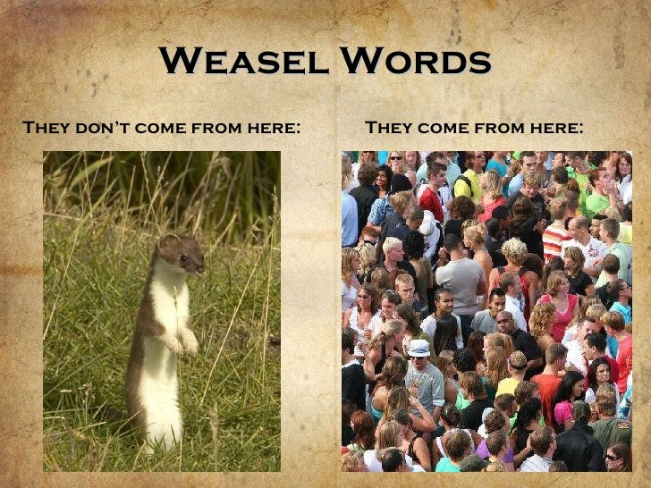 weasel words Copywriting services that can start real, engaging conversations with your customers online and offline content creation contact weasel words today.