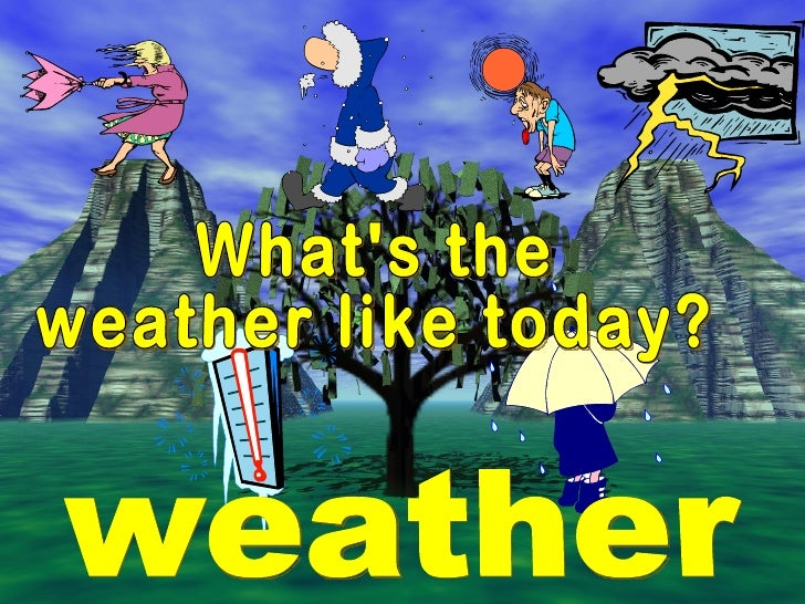 What's the  weather like today? weather