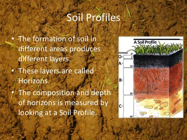 Weathering soils erosion for The meaning of soil