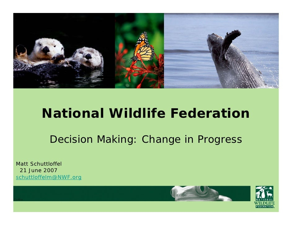 Forum One Web Executive Seminar Series: Internet Technology Investment Planning at the National Wildlife Federation