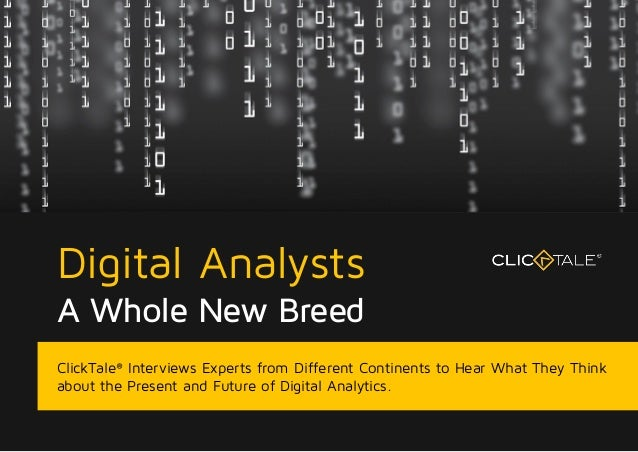 Digital Analysts A Whole New Breed ClickTale® Interviews Experts from Different Continents to Hear What They Think about t...