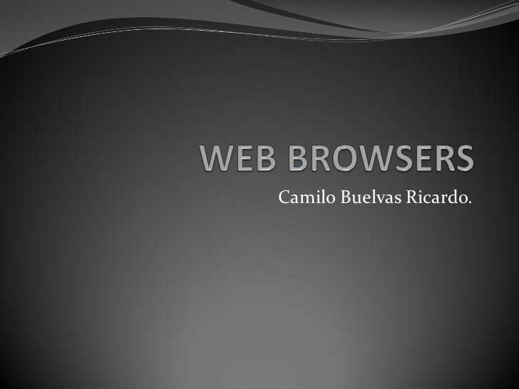 WEB BROWSERS<br />Camilo Buelvas Ricardo.<br />