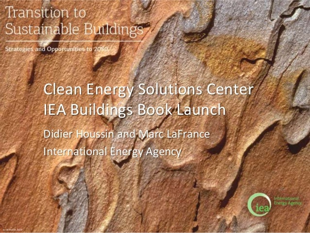 © OECD/IEA 2013 Clean Energy Solutions Center IEA Buildings Book Launch Didier Houssin and Marc LaFrance International Ene...