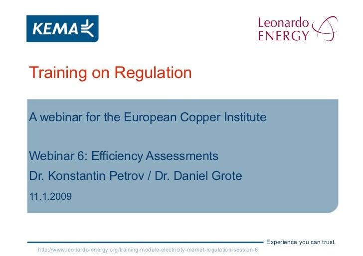 Training on Regulation A webinar for the European Copper Institute Webinar 6: Efficiency Assessments Dr. Konstantin Petrov...