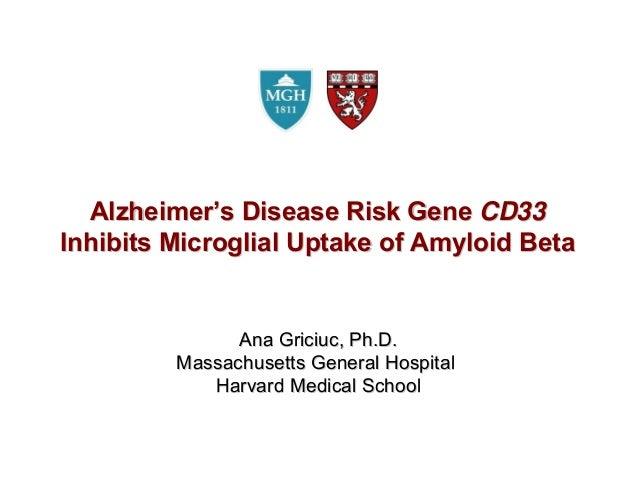 AlzheimerAlzheimer''s Disease Risk Genes Disease Risk Gene CD33CD33Inhibits Microglial Uptake of Amyloid BetaInhibits Micr...