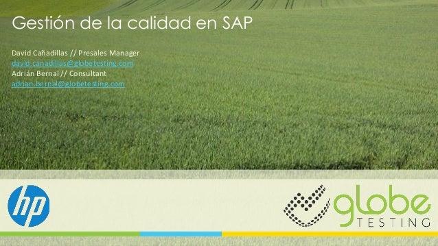 """Webinar """"Gestión de la calidad en entornos SAP"""""""