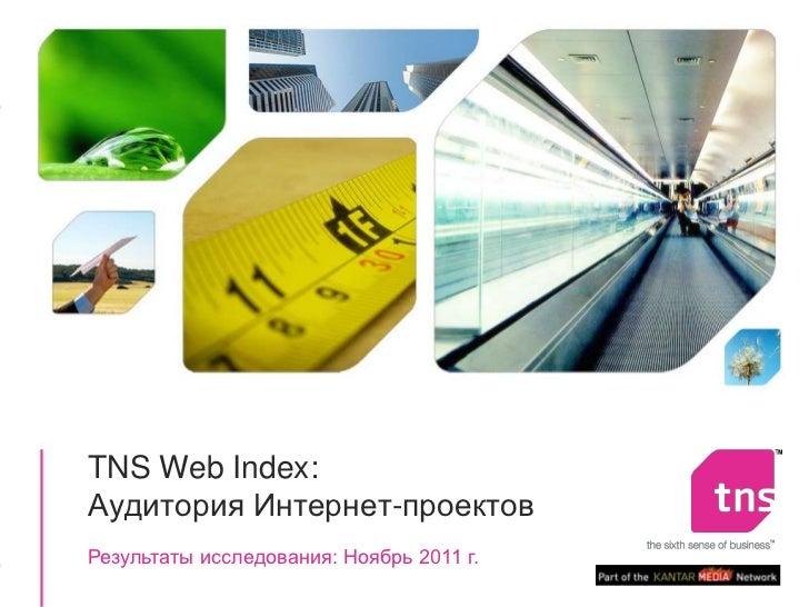 TNS !Web index report 201111