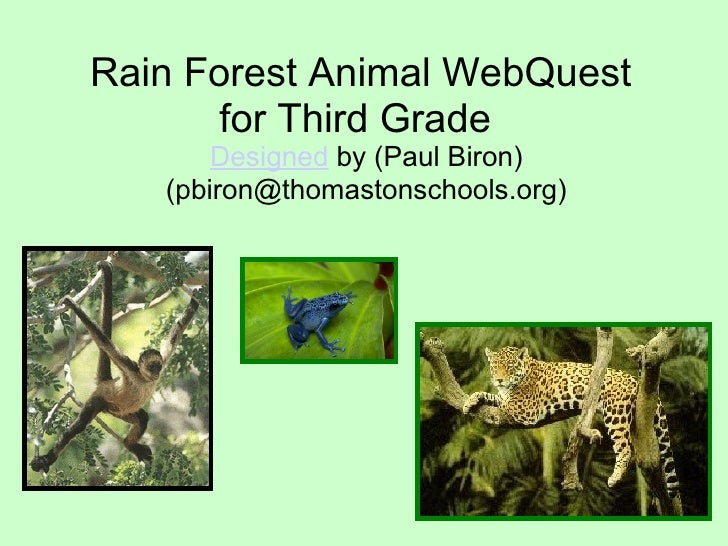 Rain Forest Animal WebQuest  for Third Grade   Designed  by (Paul Biron) (pbiron@thomastonschools.org)