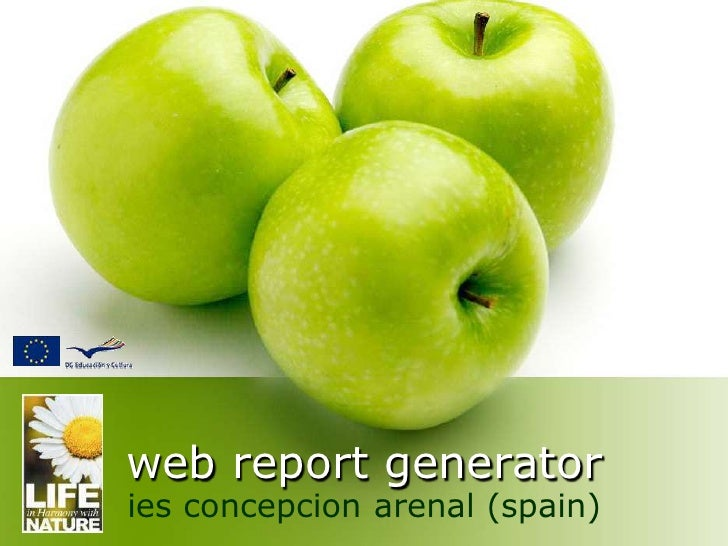 web report generator ies concepcion arenal (spain)