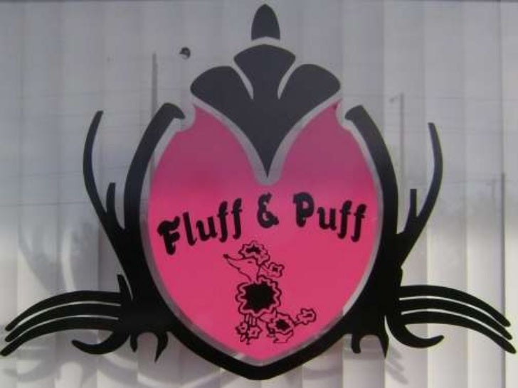 Fluff & Puff Pet Boutique Tour