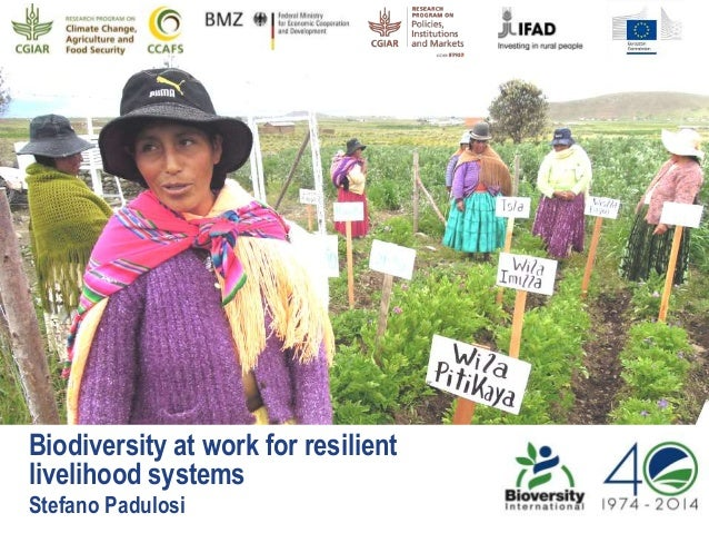 Biodiversity at work for resilient livelihood systems Stefano Padulosi