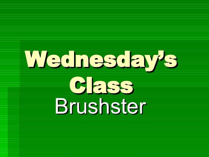 Wednesday'S Brushster