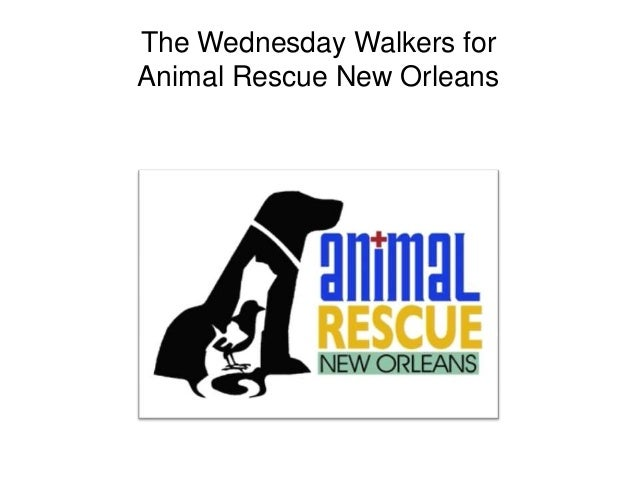 The Wednesday Walkers for Animal Rescue New Orleans