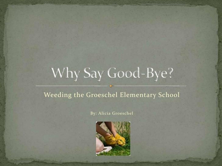 Weeding the Groeschel Elementary School             By: Alicia Groeschel
