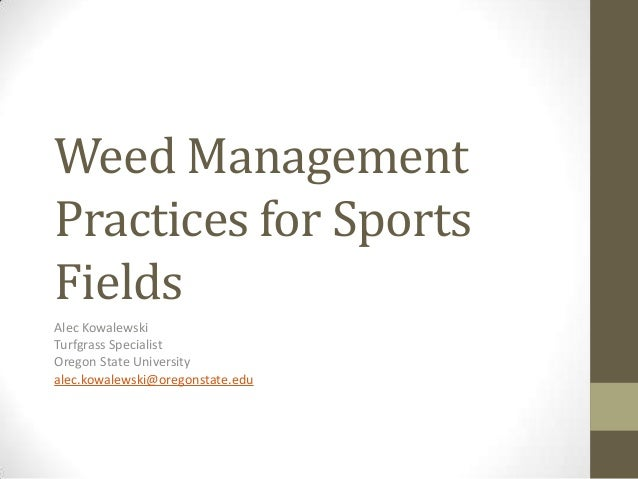 Weed Management Practices for Sports Fields Alec Kowalewski Turfgrass Specialist Oregon State University alec.kowalewski@o...