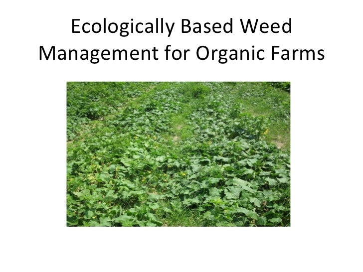 Ecologically Based Weed Management for Organic Farms