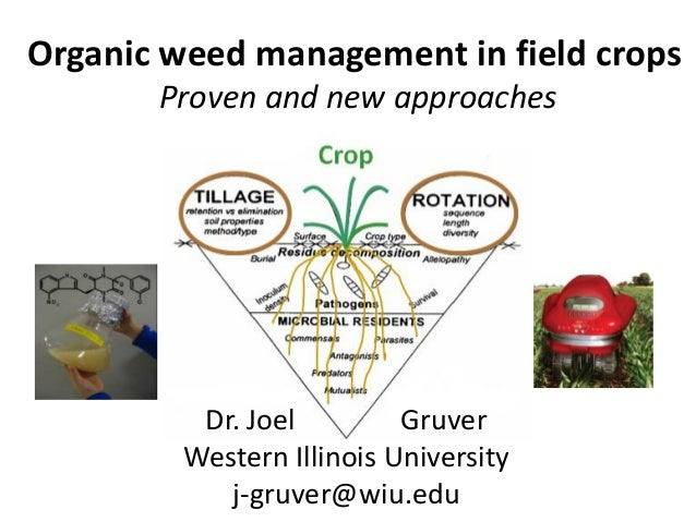 Organic weed management in field crops       Proven and new approaches          Dr. Joel         Gruver         Western Il...